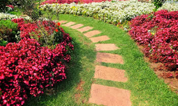 Landscaping in Pittsburgh STATE% Landscaping Services in  Pittsburgh STATE% Landscapers in  Pittsburgh STATE%