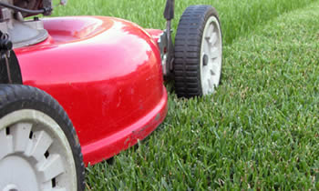 Lawn Care in Pittsburgh PA Lawn Care Services in Pittsburgh PA Quality Lawn Care in Pittsburgh PA